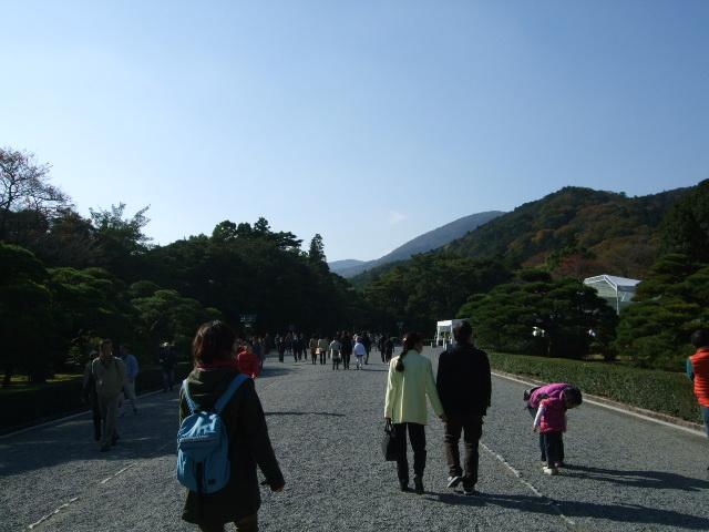 2009_1121hibi0046