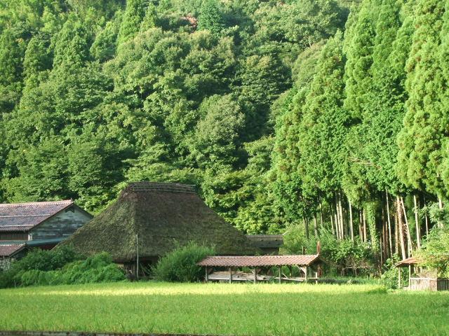 2010_0902hibi0292